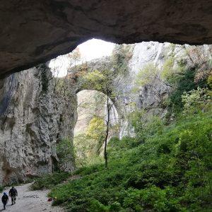 Arco fondarca