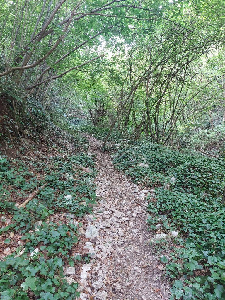 sentiero cascata secchiano